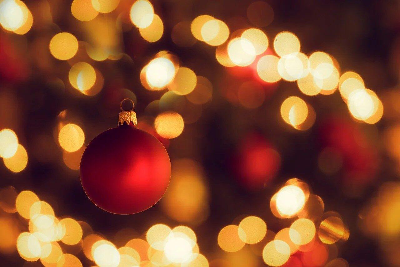 christmas-tree-3879430_1280.jpg
